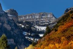 Aspen-Waldung im Herbst, der goldene Steigung mit felsigen Bergen im Hintergrund zeigt stockfotos