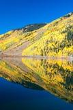 Aspens on Crystal Lake Colorado Stock Image