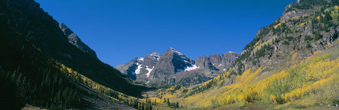 Aspens and morning light,. Maroon Bells near Aspen, Colorado Royalty Free Stock Photography