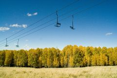 Aspens and Ski Lift Royalty Free Stock Photo