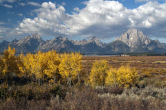 Aspens and Tetons from Willow Flats. Aspens and Grand Tetons from Willow Flats Stock Image