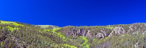 Aspens turning color in the spring create interesting lines in the mountains along the road to Creede in southern Colorado Stock Images