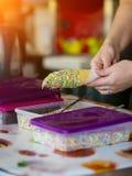 Asperje el helado en una taza de la galleta con la formación de hielo imagenes de archivo