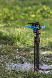 Aspersione di irrigazione Immagini Stock Libere da Diritti