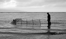 Aspettando i bianchetti, da pesca fuori dalla spiaggia nuovo Zealan di Waikanae fotografie stock libere da diritti