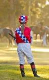 Aspettando un cavallo da corsa Immagine Stock Libera da Diritti
