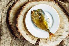 Aspetti il pesce Fotografia Stock