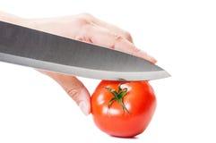 Aspetti per tagliare un pomodoro rosso con il coltello Immagine Stock