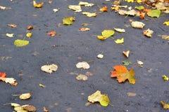 asphalt Stockbild