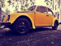 Asphalt, Automobile, Automotive Royalty Free Stock Photo