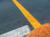 Asphalt background with white and yellow stripes. Dry grass lays on the asphalt Royalty Free Stock Photography