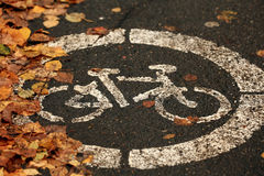 Asphalt bicycle city autumn Royalty Free Stock Photos
