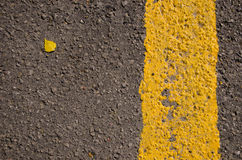Asphalt closeup yellow road mark small birch leaf Stock Images