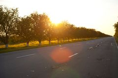 Asphalt of country road in backlit Stock Image