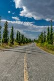 Asphalt country road Stock Photography