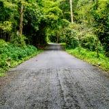Asphalt country road Royalty Free Stock Photos