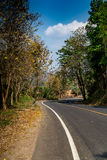 Asphalt Country road Royalty Free Stock Photography