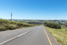 Asphalt Country Road Running Through Sugar Cane Fields photographie stock libre de droits