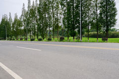 Asphalt countryroad in rice fields on sunny summer day Royalty Free Stock Photography