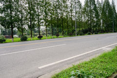 Asphalt countryroad in sunny summer Royalty Free Stock Photo