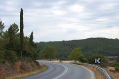 Asphalt Curved Road in de Zomer Forest Empty Winding Road stock afbeeldingen