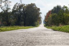 Asphalt, empty, country road among trees and bushes. End of the summer Royalty Free Stock Image
