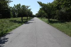 Asphalt-Fahrrad-Weise stockfoto