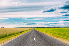 Asphalt Freeway, estrada, estrada secundária da estrada no campo imagem de stock royalty free