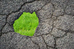 Asphalt hole and grass Royalty Free Stock Image