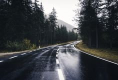 Asphalt mountain road in overcast rainy day in spring. Road in the spring forest in rain. Perfect asphalt mountain road in overcast rainy day. Roadway with stock images