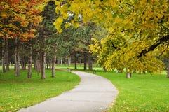 Asphalt path in autumn park Royalty Free Stock Photos