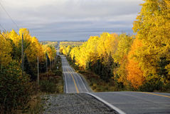 Asphalt Road. Picture of an asphalt road in autumn Stock Photo