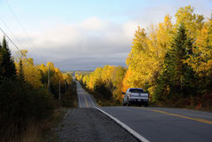 Asphalt Road. Picture of an asphalt road in autumn Stock Images
