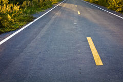 Asphalt road. Closeup of asphalt suburban road Royalty Free Stock Photo