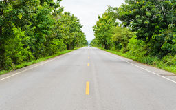 Asphalt road Royalty Free Stock Images