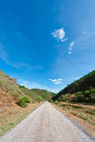 Asphalt Road Imagem de Stock Royalty Free