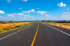 Asphalt road in the African savannah Stock Images