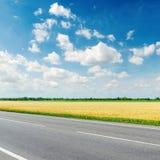Asphalt road along golden field under blue sky Royalty Free Stock Image
