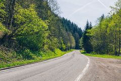Asphalt road in Austria through the forest, valley in Austria in a beautiful summer day. Alps mountains tranquil summer view ( stock images