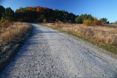 Asphalt road in autumn day Royalty Free Stock Images