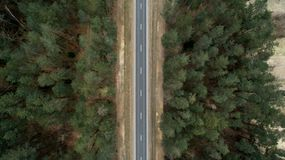 Asphalt road and autumn forest from a bird`s eye view. Aerial photography of nature.  stock images