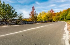 Asphalt road through autumn forest in mountains Royalty Free Stock Photo