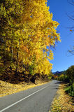 Asphalt road in beautiful autumn. Shar mountain, Kosovo Royalty Free Stock Photography