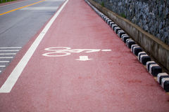 Asphalt road and bicycle lane along tropical sea coastline Stock Photography