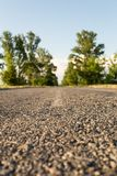 Asphalt road among the blurred tree line. Asphalt road among the tree line, shallow depth of field Stock Photography