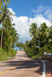 Asphalt road and coconut palm tree in island Koh Phangan, Thailand Royalty Free Stock Images