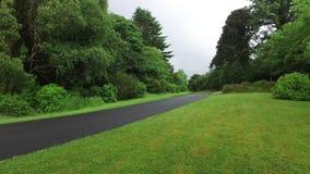 Asphalt road at connemara in ireland  12 stock video