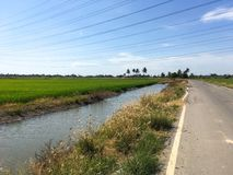 Asphalt road in country Chachoengsao Royalty Free Stock Photos