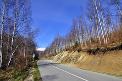 Asphalt road in countryside on sunny autumn day Stock Photo