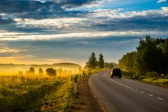 Asphalt road and car, earl morning. Asphalt road curve in forest at sunrise morning royalty free stock images
